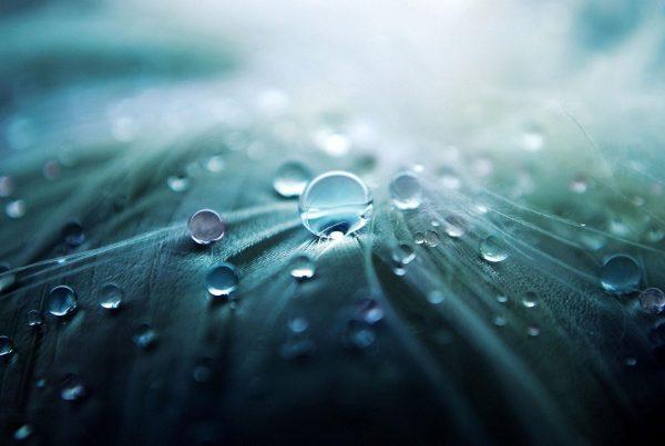 Advizzo water efficiency company brazil