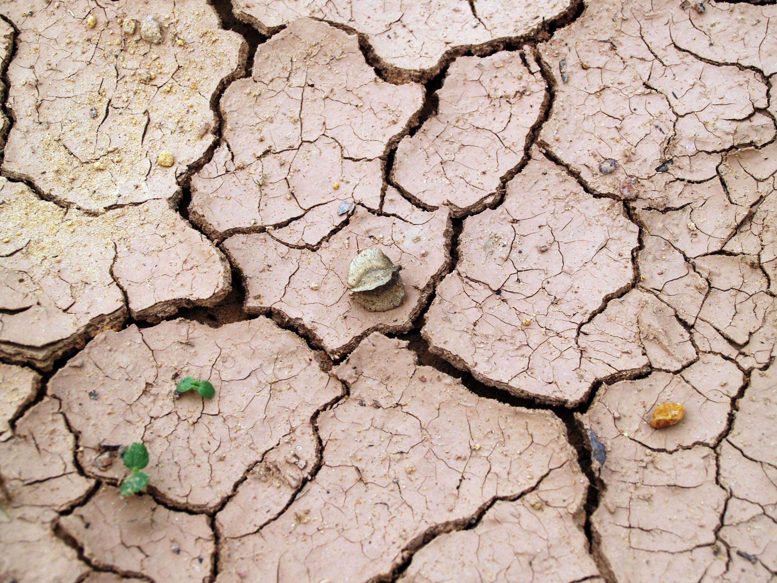 Addressing Australia's growing water problem