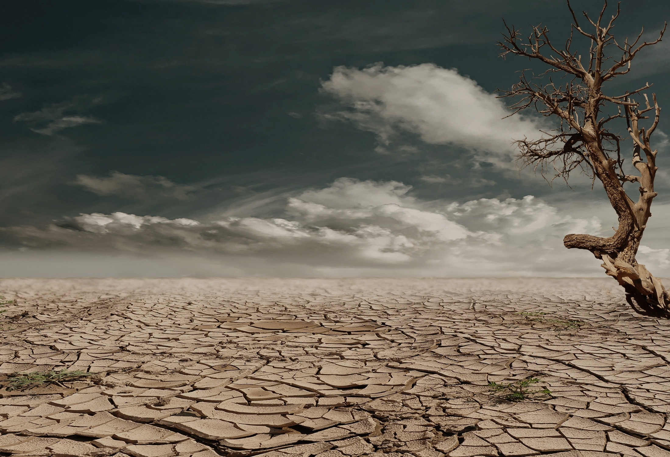 Advizzo's solution for Drought Demand Management